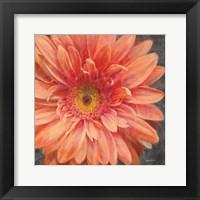 Framed Vivid Floral II Crop