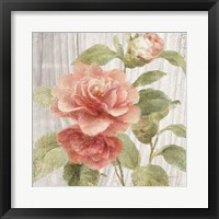 Framed Scented Cottage Florals III Crop