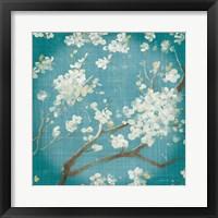 Framed White Cherry Blossoms I on Teal Aged no Bird
