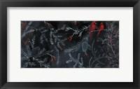 Framed Cardinal Chalkboard