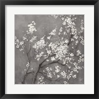 Framed White Cherry Blossoms I on Grey Crop
