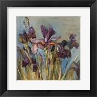 Framed Spring Iris I