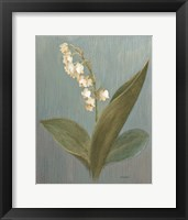 Framed May Lily of the Valley Green