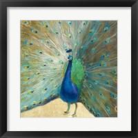 Framed Blue Peacock Cream