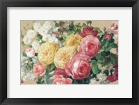 Framed Antique Roses on Tan Crop
