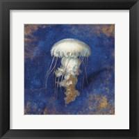 Treasures from the Sea Indigo VI Framed Print