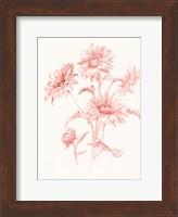Framed Farm Nostalgia Flowers I