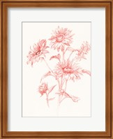 Framed Farm Nostalgia Flowers I