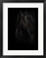 Framed Black Pearl
