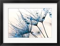 Framed Mystic Blue
