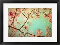 Framed Flamboyant I