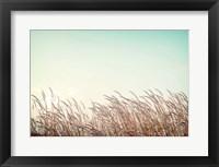 Framed Retro Grass