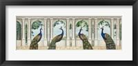Framed Elegant Peacock I