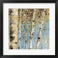Framed White Forest IV