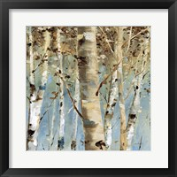 Framed White Forest III