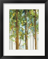 Framed Forest Study II SPC