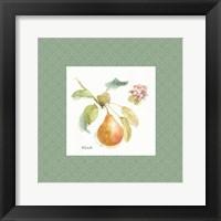 Framed Orchard Bloom II Border