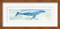 Framed Sea Life VI