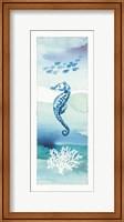 Framed Sea Life VIII