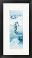 Framed Sea Life VII