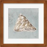 Framed Sand and Seashells IV