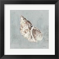 Framed Sand and Seashells II