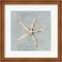 Framed Sand and Seashells III
