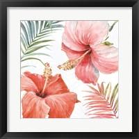 Framed Tropical Blush III