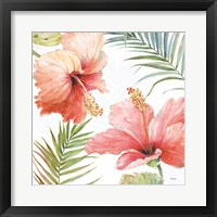 Framed Tropical Blush II
