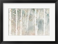 Framed Woodland Walk I