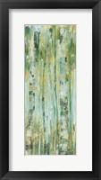 Framed Forest VII
