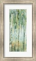 Framed Forest VIII