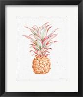 Framed Gracefully Blush Pineapple XII