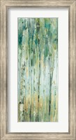 Framed Forest VIII with Teal
