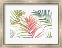 Framed Tropical Blush IV