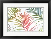Framed Tropical Blush IV