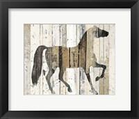 Framed Dark Horse v2
