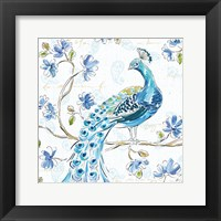 Framed Peacock Allegory IV White