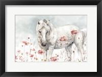 Framed Wild Horses II