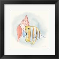 Framed Sea Life I
