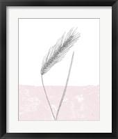 Framed Rye
