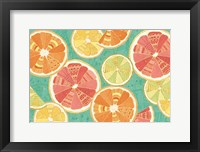 Framed Citrus Splash XI