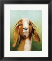 Framed Got Your Goat v2