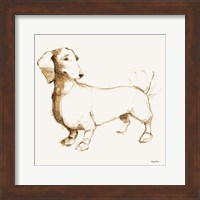 Framed Clio Brown and Orange