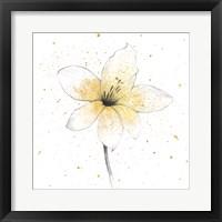 Framed Gilded Graphite Floral II
