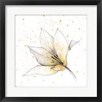 Framed Gilded Graphite Floral IX