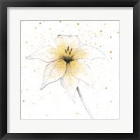 Framed Gilded Graphite Floral V