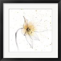 Framed Gilded Graphite Floral VIII