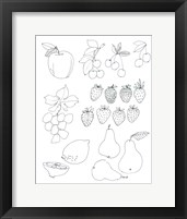 Framed Line Art Fruits