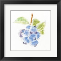 Framed Garden Delight II